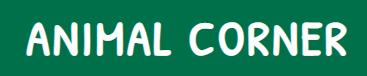 Animal Corner